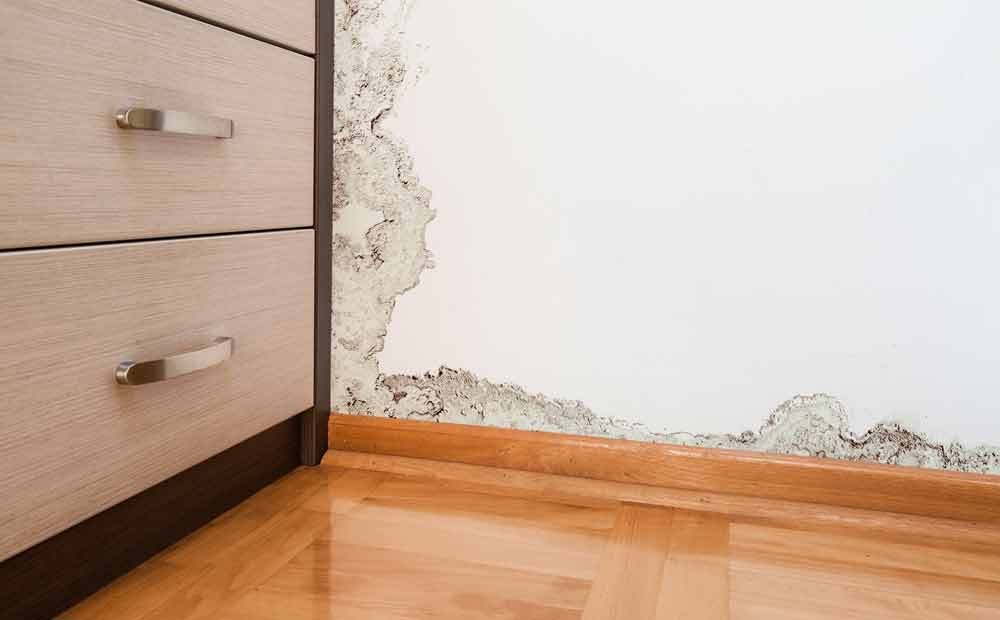 What To Do In A Water Damage Emergency
